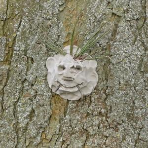 Tree Sprite 6